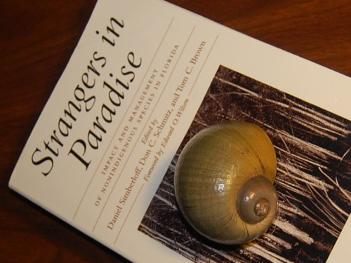 literature-image