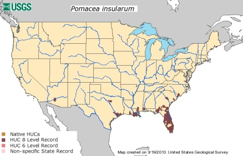 Pomacea insularum map 03.19.2013 USGS